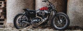 Hookie Co Tasmanian Devil 2017 Harley-Davidson Sportster XLH 883 1991